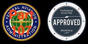federal aviation certified and professional drone pilot